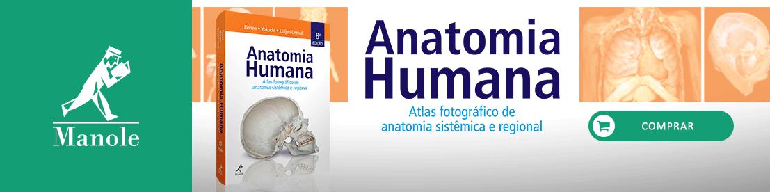 Banner Anatomia Humana