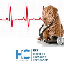 curso-basico-de-eletrocardiografia-para-medicina-veterinaria