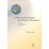 A-Internacionalizacao-dos-Direitos-Humanos