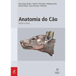 Anatomia-do-Cao