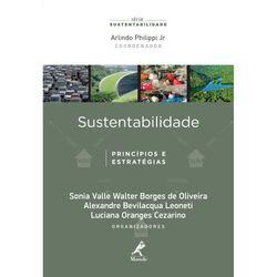 sustentabilidade-principios-e-estrategias