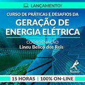 Curso-de-praticas-e-desafios-da-geracao-de-energia-eletrica-